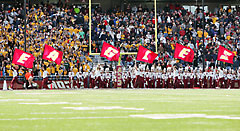 Fabric Boston College E-A-G-L-E-S spirit flags