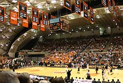 princeton university basketball banners