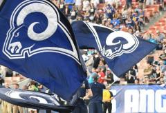 Hand sewn Rams football flags for cheerleading